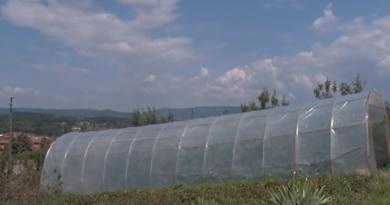 Измењен Правилник о подстицајима за пољопривредна газдинства